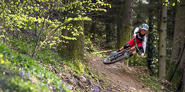 mtb category image